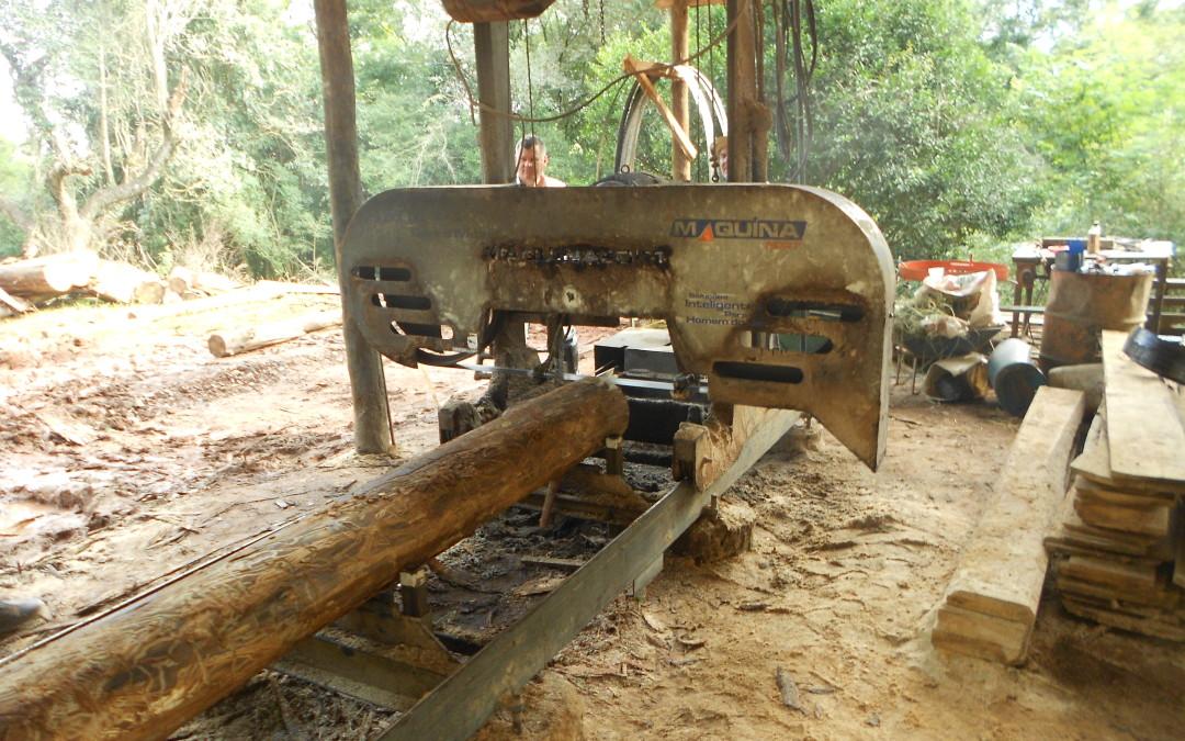 Visita Técnica ao Empreendimento Florestal de Arlindo Schindler em Santo Augusto – RS