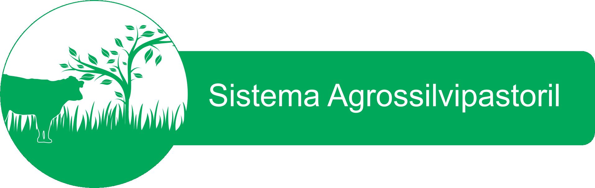 Sistema Agrossilvipastoril