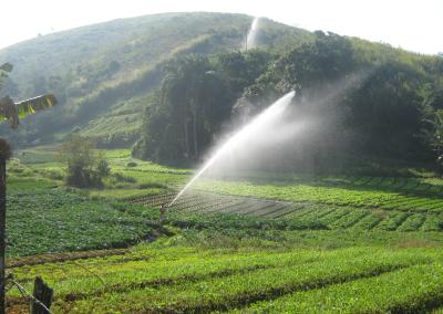 irrigação 3