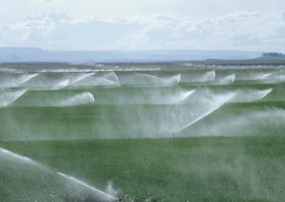 irrigação de lavoura