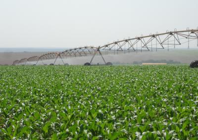 irrigação de lavoura2