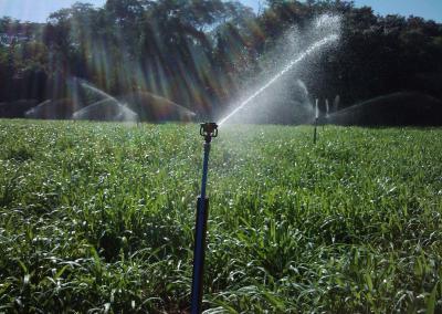 irrigação de lavoura3