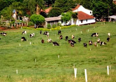 regularização de propriedade rural 2